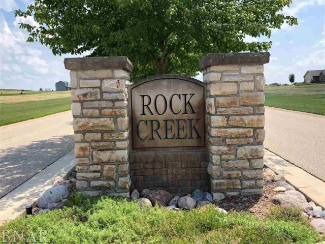 12 Boulder Dr, Carlock, IL 61725 (MLS #2182442) :: Janet Jurich Realty Group