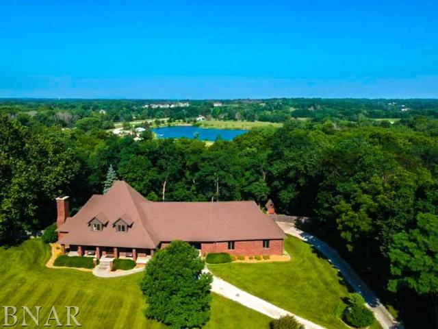 8254 N 2075 East Rd, Downs, IL 61736 (MLS #2182475) :: The Jack Bataoel Real Estate Group