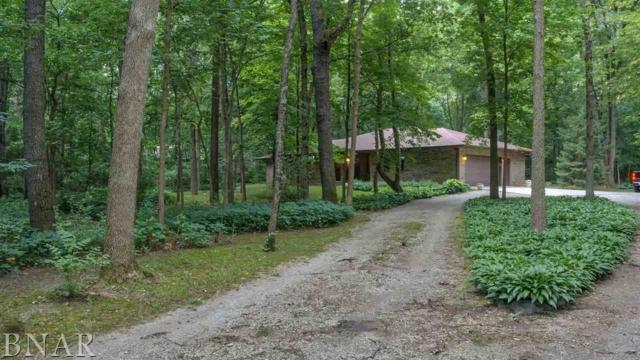 6250 N 900 East Rd, Shirley, IL 61772 (MLS #2182520) :: Janet Jurich Realty Group