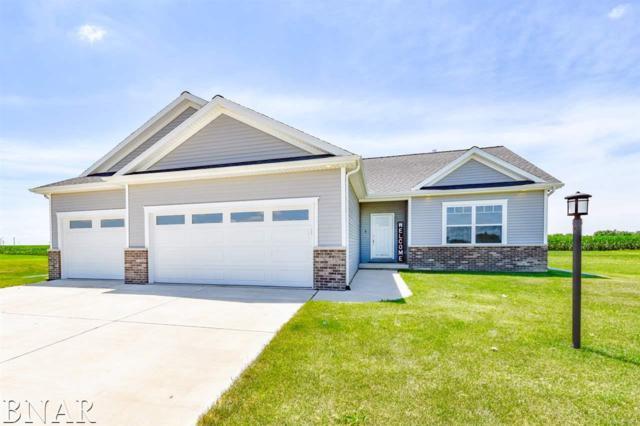1 Boulder Drive, Carlock, IL 61725 (MLS #2182740) :: BNRealty