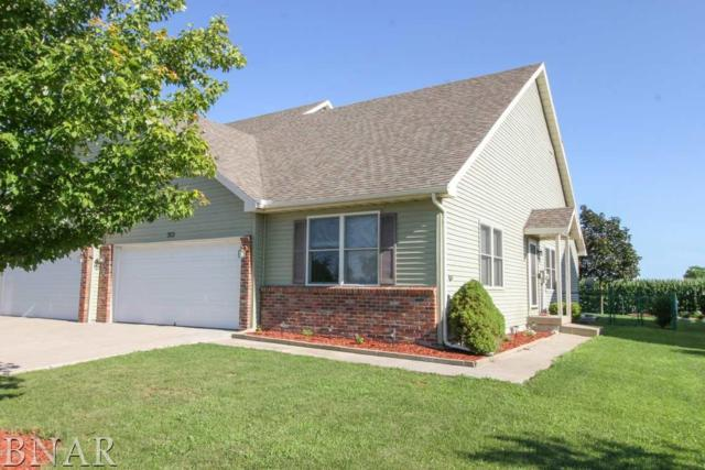 313 Burcham, Leroy, IL 61752 (MLS #2182809) :: Janet Jurich Realty Group