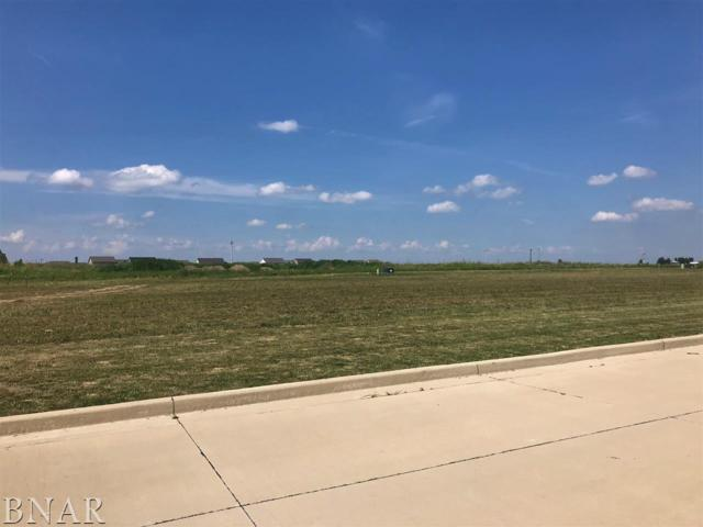 3600 Como, Normal, IL 61761 (MLS #2182834) :: Janet Jurich Realty Group