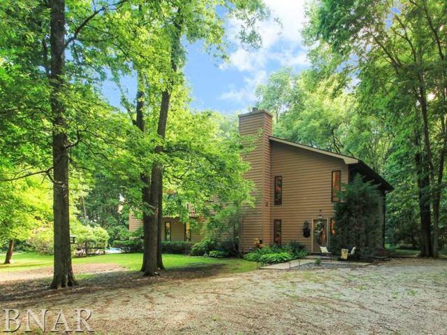 6182 N 900 East Rd, Shirley, IL 61772 (MLS #2182985) :: Janet Jurich Realty Group