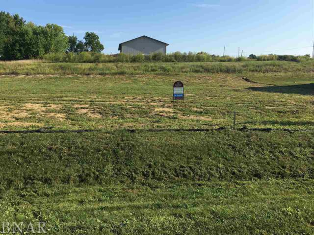 Lot 2 Raef, Downs, IL 61736 (MLS #2183420) :: Janet Jurich Realty Group