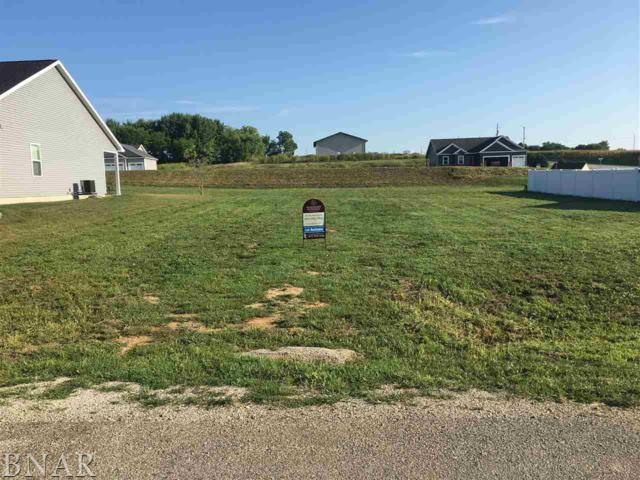 Lot 29 Dode, Downs, IL 61736 (MLS #2183426) :: Janet Jurich Realty Group
