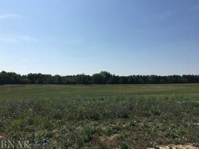 Lot 66 Winding Way, Bloomington, IL 61705 (MLS #2183458) :: Janet Jurich Realty Group