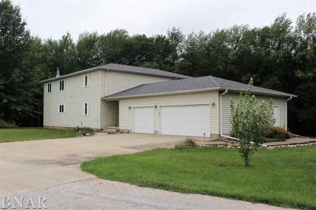 17462 Parnell Road, Dewitt, IL 61735 (MLS #2183506) :: Janet Jurich Realty Group