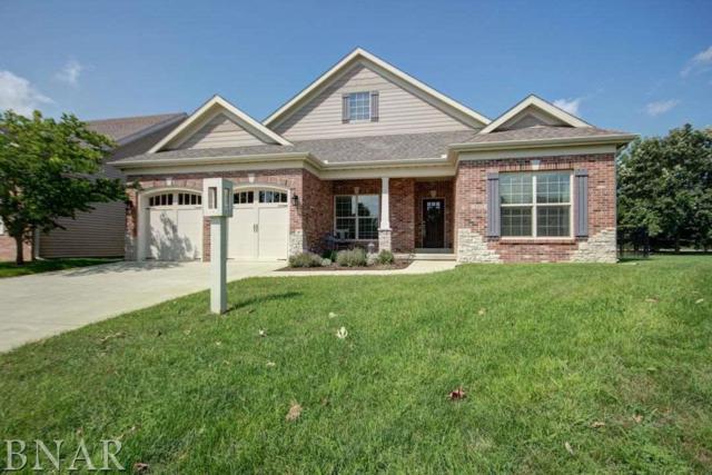 2412 Prairieridge Pl, Champaign, IL 61822 (MLS #2183555) :: Janet Jurich Realty Group