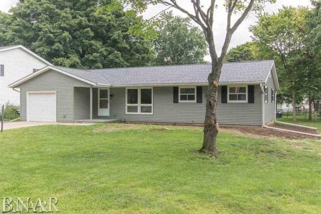 512 Oak St, Delavan, IL 61734 (MLS #2183611) :: BNRealty