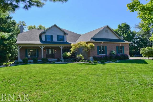 13699 Lucca Forest Dr., Bloomington, IL 61705 (MLS #2183768) :: BNRealty