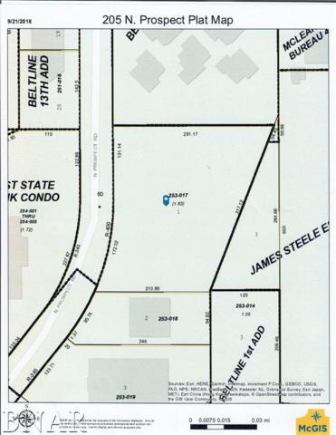 205 N Prospect, Bloomington, IL 61704 (MLS #2183906) :: BNRealty