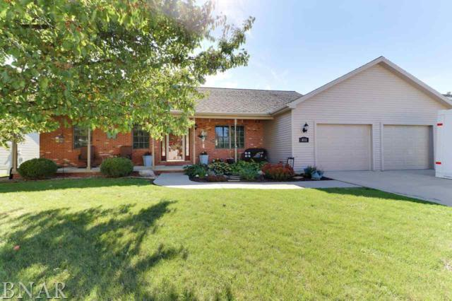 412 Boulder, Heyworth, IL 61745 (MLS #2184119) :: BNRealty