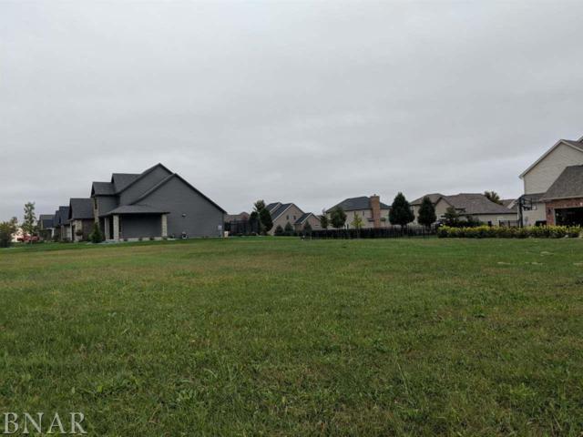 4001 Sutter, Bloomington, IL 61705 (MLS #2184137) :: BNRealty
