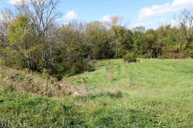 2012 County RD 600 N, Secor, IL 61771 (MLS #2184181) :: Janet Jurich Realty Group