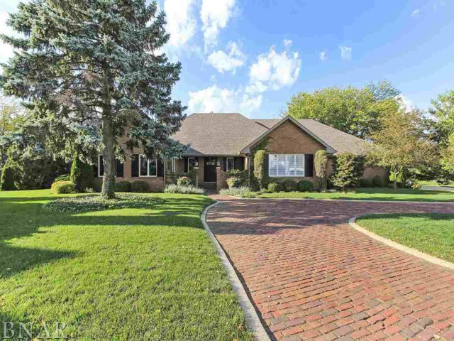 6 Brookridge Ct, Bloomington, IL 61704 (MLS #2184304) :: BNRealty