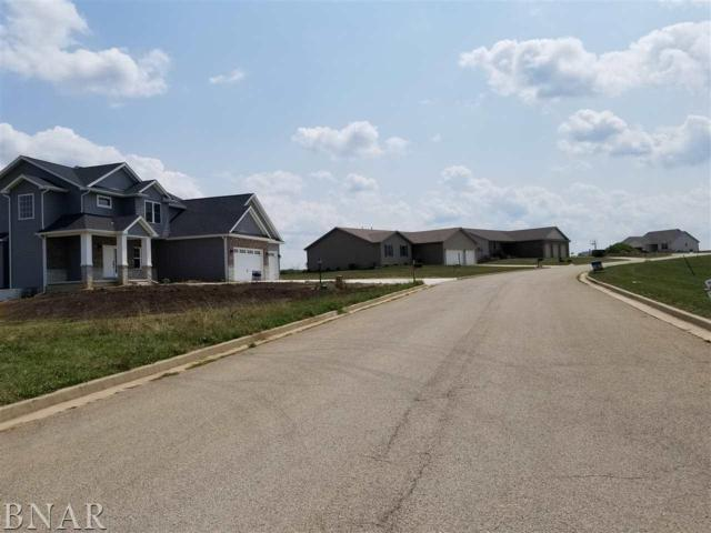 Lot 4 Dasher Dr, Heyworth, IL 61745 (MLS #2151140) :: Janet Jurich Realty Group