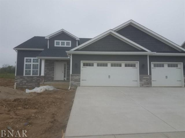 502 Raef, Downs, IL 61736 (MLS #2170991) :: Berkshire Hathaway HomeServices Snyder Real Estate
