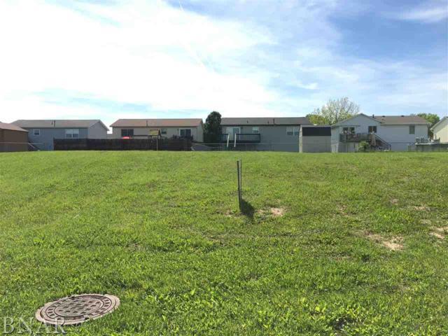 4th Addn Meadowlark Lots 280,281,288, Decatur, IL 62526 (MLS #2171206) :: Janet Jurich Realty Group