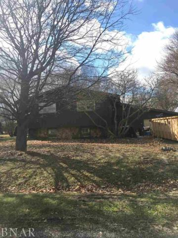 303 S East, Hudson, IL 61748 (MLS #2171846) :: Janet Jurich Realty Group
