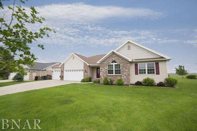 213 Whitetail Lane, Hudson, IL 61748 (MLS #2172055) :: The Jack Bataoel Real Estate Group