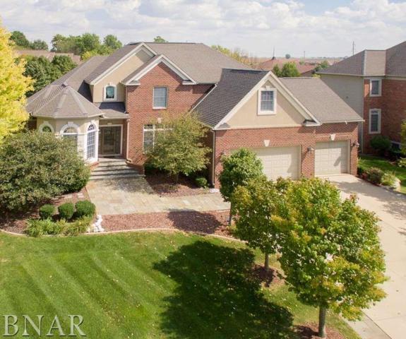 15 Lavender Lane, Bloomington, IL 61704 (MLS #2172265) :: BNRealty