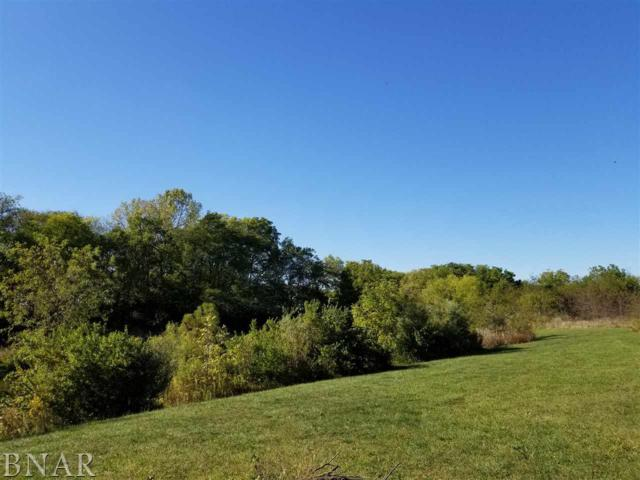 Lot 2 Van Dolah Heirs Sub, Lexington, IL 61753 (MLS #2173795) :: The Jack Bataoel Real Estate Group