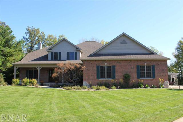 13699 Lucca Forest Dr., Bloomington, IL 61705 (MLS #2174621) :: Janet Jurich Realty Group