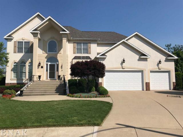 2 Raspberry, Bloomington, IL 61704 (MLS #2180739) :: BNRealty