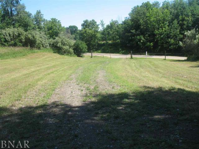 W Carle Springs Road, Wapella, IL 61777 (MLS #2181376) :: Janet Jurich Realty Group