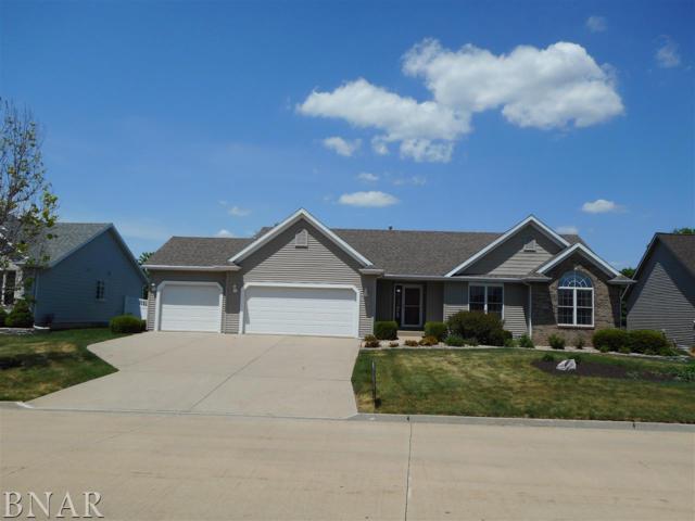 314 Prairie View, Hudson, IL 61748 (MLS #2181649) :: BNRealty