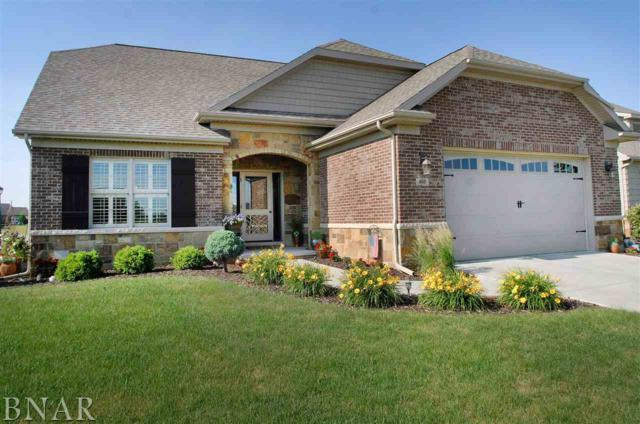 803 Table Rock Circle, Normal, IL 61761 (MLS #2182398) :: Janet Jurich Realty Group