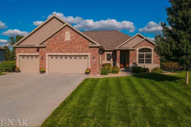 5 Lavender Lane, Bloomington, IL 61704 (MLS #2183681) :: BNRealty