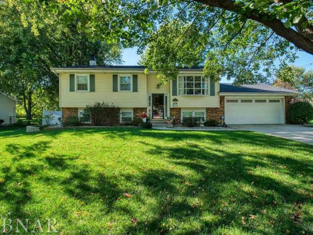 101 Sandra Lane, Normal, IL 61761 (MLS #2184016) :: Janet Jurich Realty Group