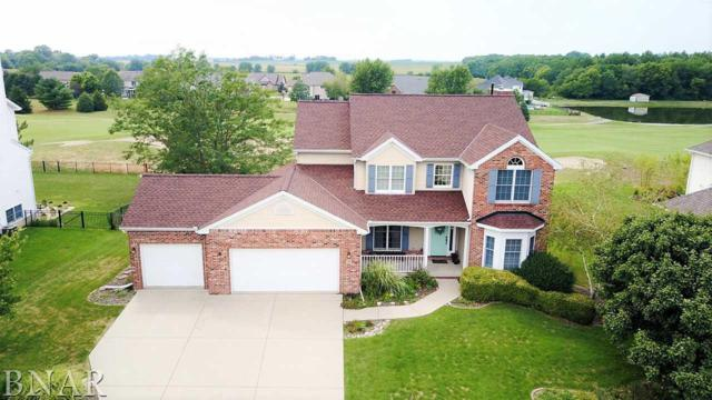 19 Pebblebrook Court, Bloomington, IL 61705 (MLS #2172832) :: Berkshire Hathaway HomeServices Snyder Real Estate
