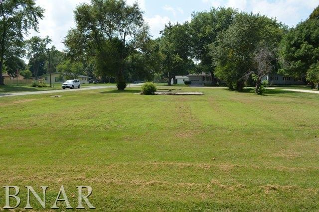 210 S Washington, Hudson, IL 61748 (MLS #2171900) :: The Jack Bataoel Real Estate Group