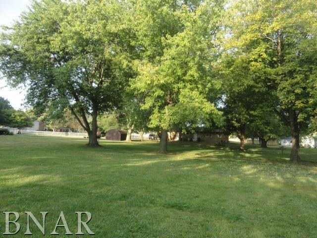 Lots 6 & 7 Illinois St, Waynesville, IL 61778 (MLS #2173685) :: Berkshire Hathaway HomeServices Snyder Real Estate