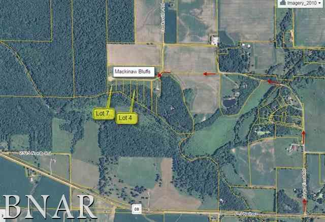 Lot 4 20807 Clarksville Rd., Lexington, IL 61753 (MLS #2174313) :: Berkshire Hathaway HomeServices Snyder Real Estate