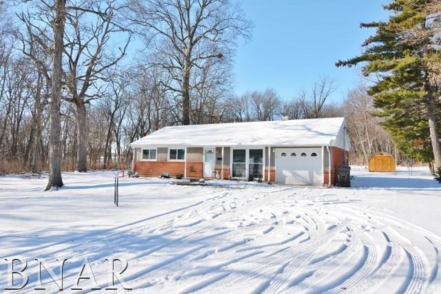 4240 N 1475 East Road, Heyworth, IL 61745 (MLS #2180145) :: The Jack Bataoel Real Estate Group