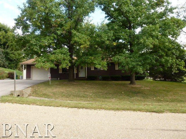 9288 Wilmax Drive, Clinton, IL 61727 (MLS #2183842) :: Berkshire Hathaway HomeServices Snyder Real Estate