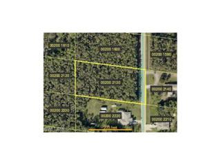 24200 Roger Dodger St, BONITA SPRINGS, FL 34135 (MLS #216077614) :: The New Home Spot, Inc.