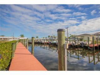 20700 River Dr, ESTERO, FL 33928 (MLS #217003210) :: The New Home Spot, Inc.