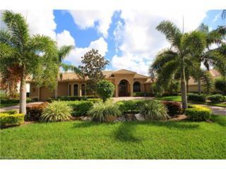 20313 Wildcat Run Dr, ESTERO, FL 33928 (MLS #217005945) :: The New Home Spot, Inc.