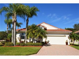 9501 Lismore Ln, ESTERO, FL 33928 (MLS #217008011) :: The New Home Spot, Inc.
