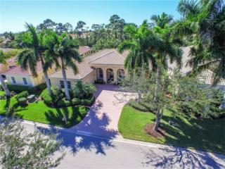 18250 Creekside View Dr, FORT MYERS, FL 33908 (MLS #217009691) :: The New Home Spot, Inc.