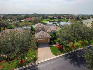 9911 Rookery Cir, ESTERO, FL 33928 (MLS #217013906) :: The New Home Spot, Inc.