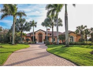 10015 Magnolia Bend, ESTERO, FL 34135 (MLS #217014770) :: The New Home Spot, Inc.