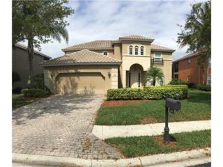 9980 Rookery Cir, ESTERO, FL 33928 (MLS #217017295) :: The New Home Spot, Inc.