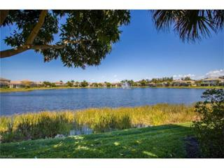 8849 Paseo De Valencia St, FORT MYERS, FL 33908 (MLS #217019221) :: The New Home Spot, Inc.
