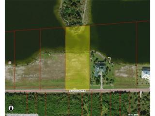 375 Shady Hollow Blvd W, NAPLES, FL 34120 (MLS #217021193) :: The New Home Spot, Inc.