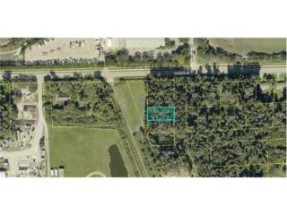 Americana Ave, ESTERO, FL 33928 (MLS #217021364) :: The New Home Spot, Inc.